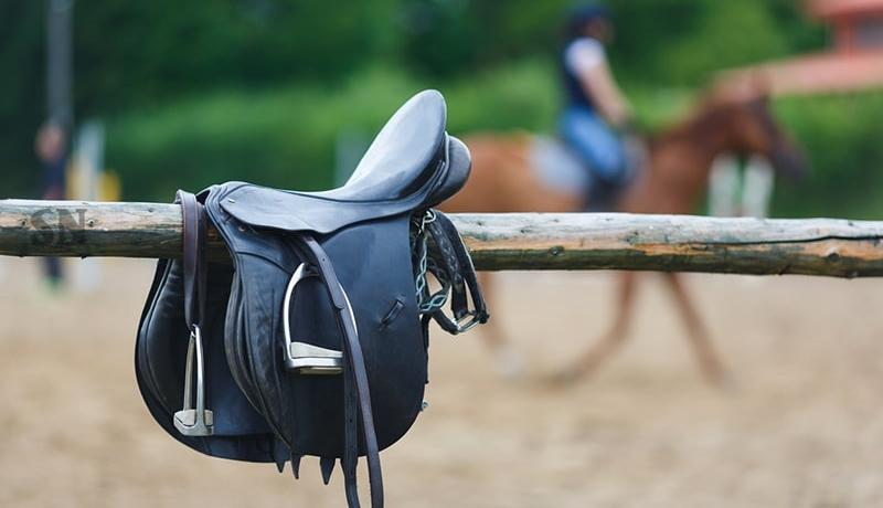 Quelles sont les parties et la composition d'une selle de cheval?
