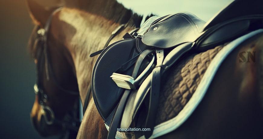 Les différents types de selles de cheval