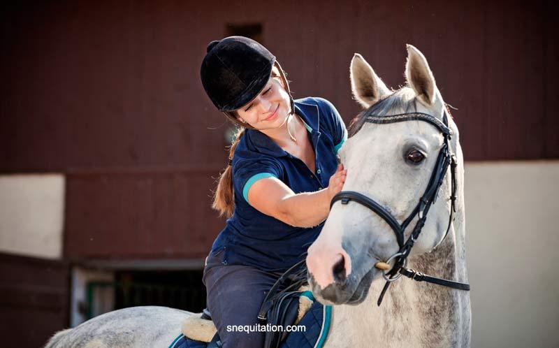 La selle est aussi importante que le filet en termes de relation entre le cheval et son cavalier
