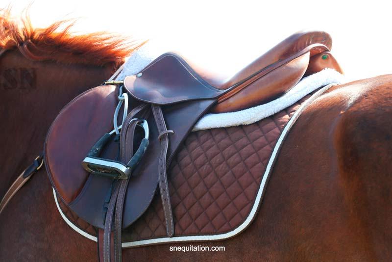 Guide de la selle de cheval taille 17 pouces