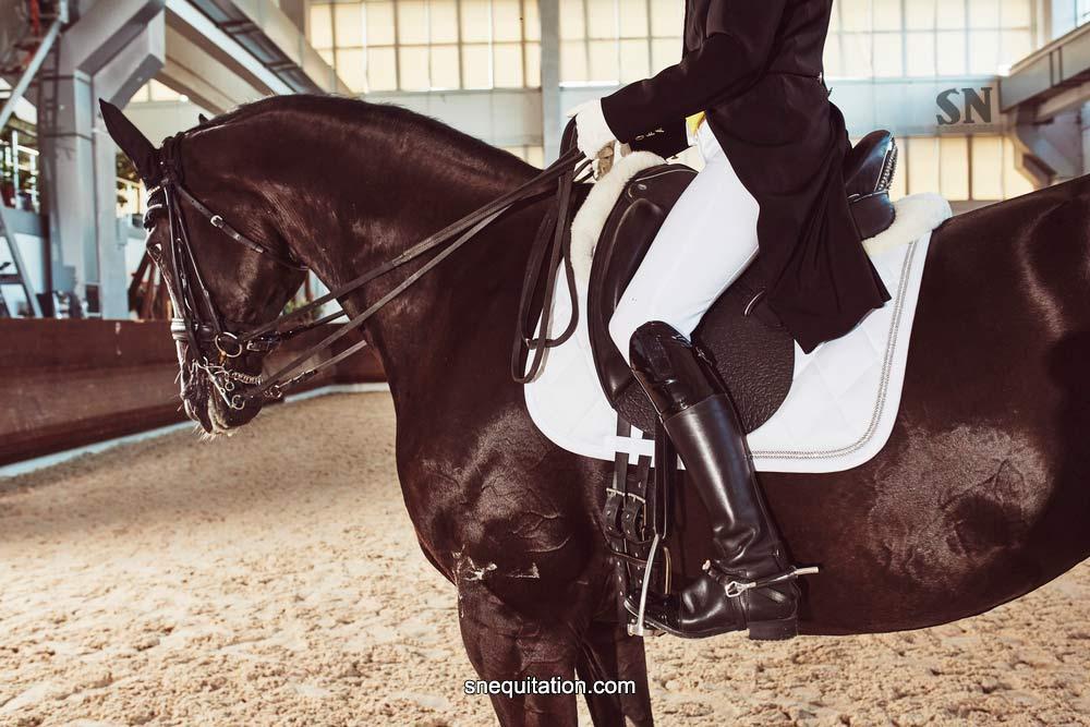 Taille d'une selle de cheval : le guide complet
