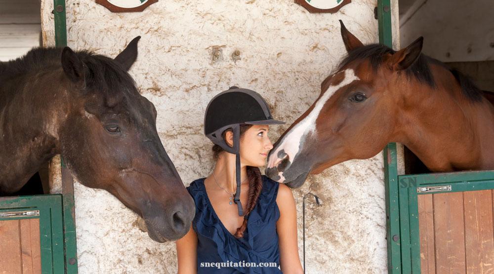 Comment faire connaissance avec son cheval ?