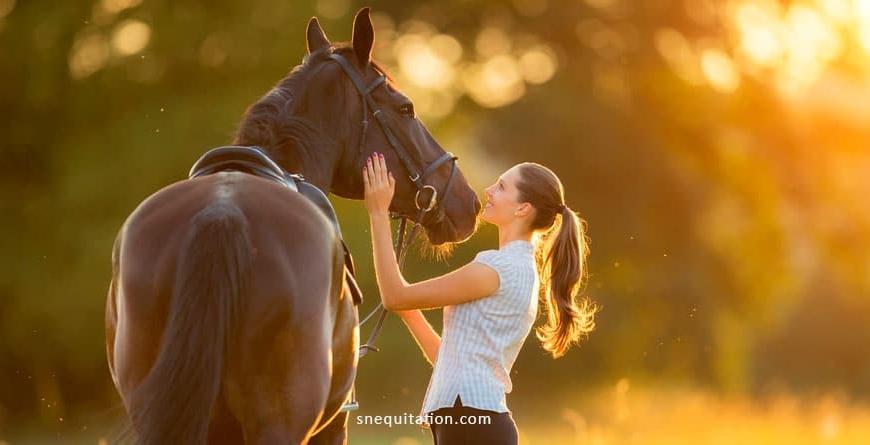 jeux à pied avec son cheval