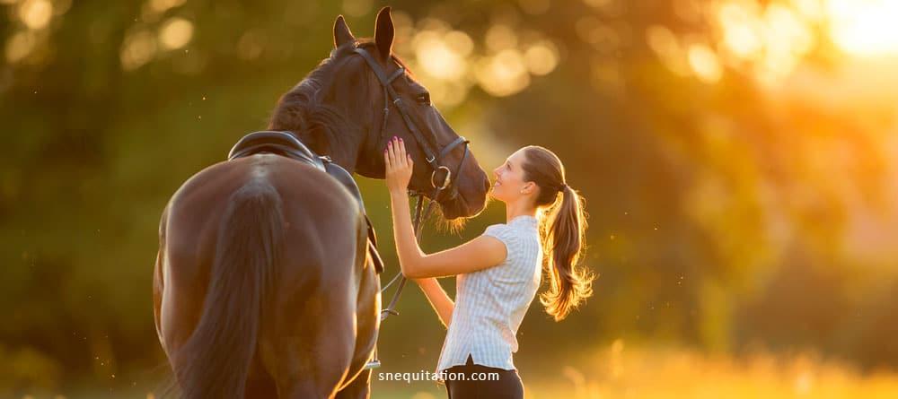 Les meilleurs jeux à pied avec son cheval