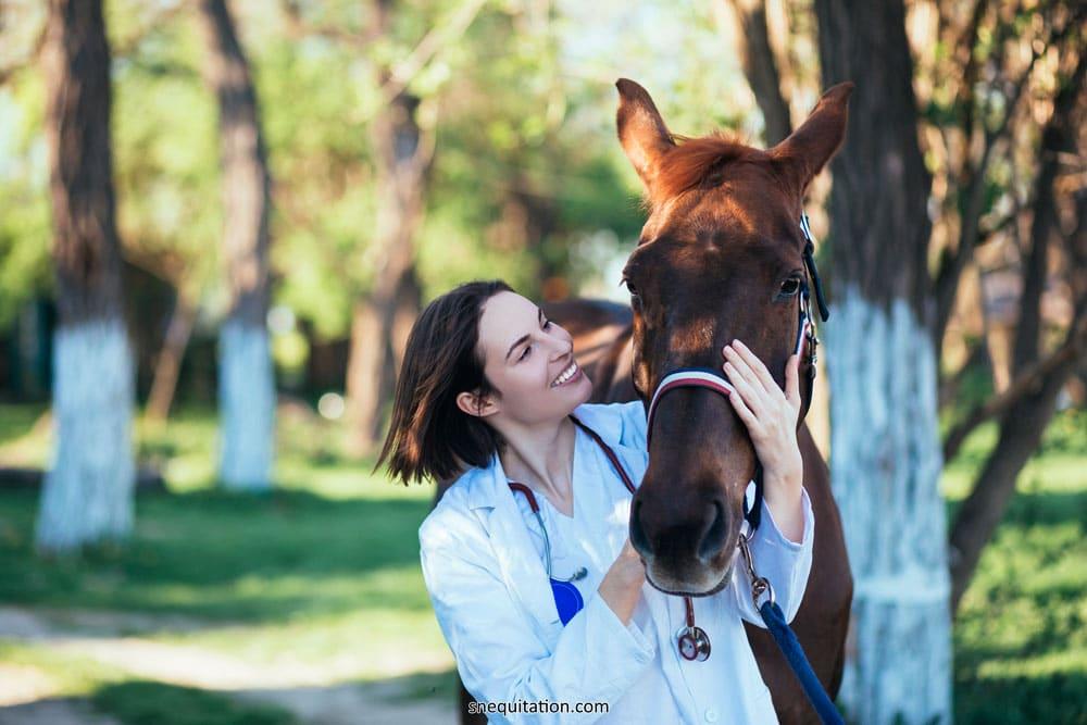 Mon cheval va-t-il complètement guérir