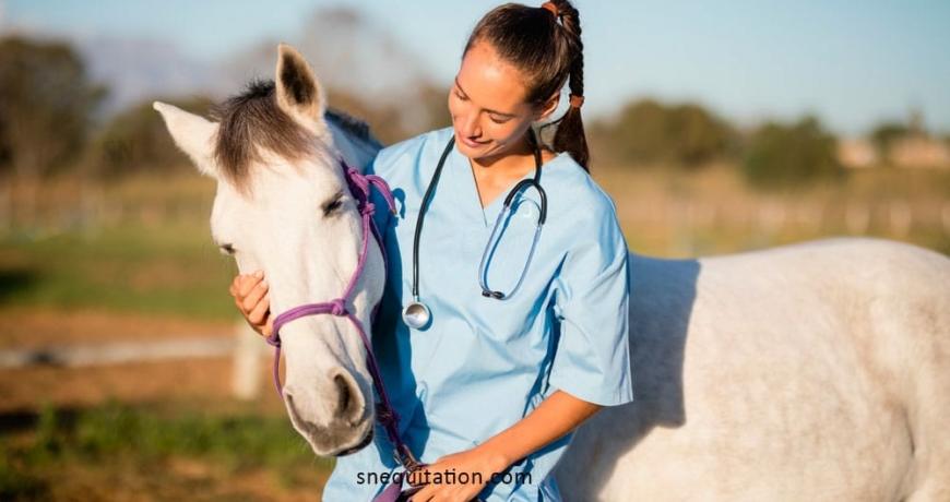 la vermifugation du cheval